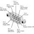 DB-9 Pin out chart